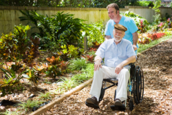 old man in wheelchair with his caregiver